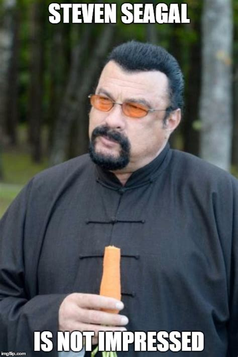 Steven Seagal Meme - image tagged in not impressed imgflip