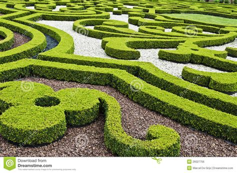garten zierpflanze ornamental garden stock photo image of complicated