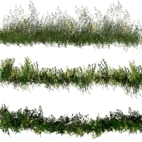 pattern photoshop vegetation 50 photoshop brushes of dynamic vegetation 3d models 2d