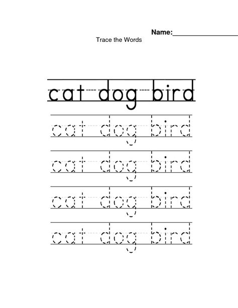 preschool workbooks word tracing animal alphabet word tracing workbook books name tracing worksheet abitlikethis