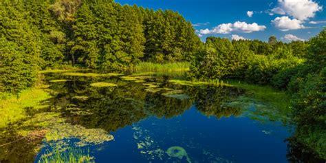 imagenes recursos naturales para imprimir como proteger el medio ambiente y los recursos naturales