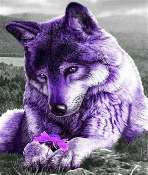 17 best images about purple animals on pinterest the
