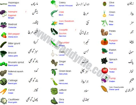 a to z vegetables names with pictures all vegetables pictures with names