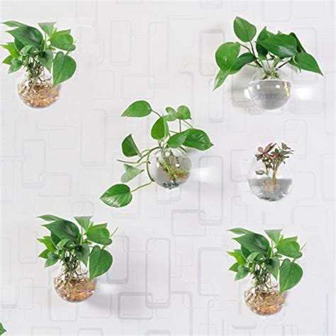 orimina pack   glass planters wall hanging planters