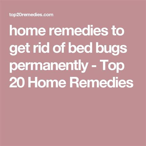get rid of bed bugs fast and easy get rid of bed bugs fast and easy 28 images how to get