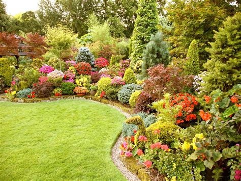 cute garden wallpapers fair lovely cute flower picture gallery for
