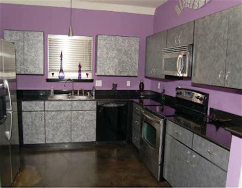Purple Kitchen Decorating Ideas Contemporary Modern Kitchen Purple Color Design Ideas