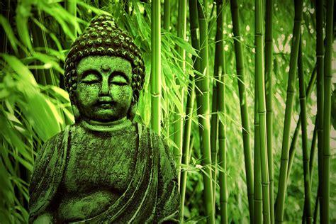 Green Wall Decor by Buddha Bamboo Forest Wallpaper Wall Decor
