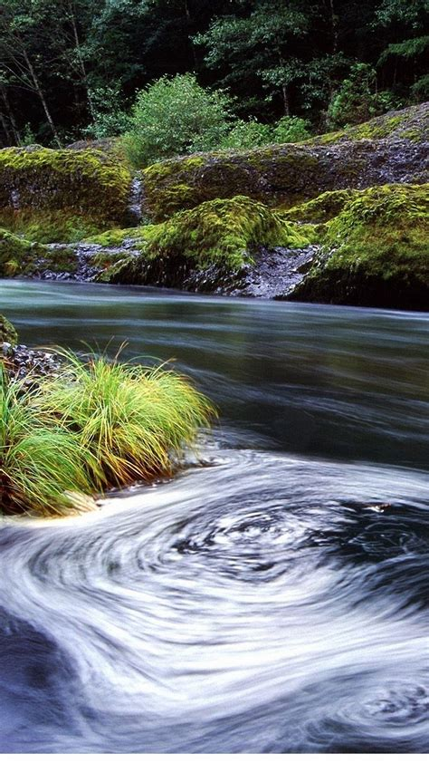 nature forest river iphone  wallpapers hd