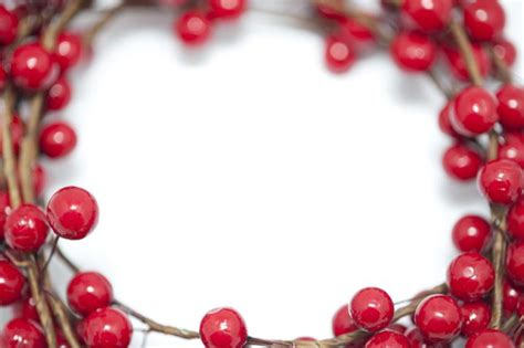 photo  red berry christmas border  christmas images
