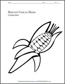 harvest corn maize coloring sheet kids craft template