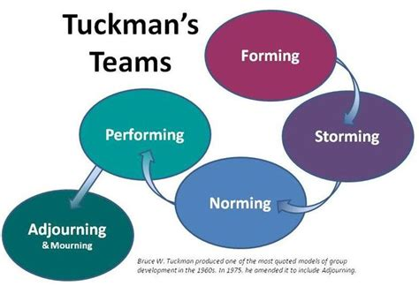 the dynamic student development meta theory a new model for student success adolescent cultures school and society books 11 best images about the tuckman model on