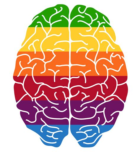 brain color mind clipart colorful pencil and in color mind clipart
