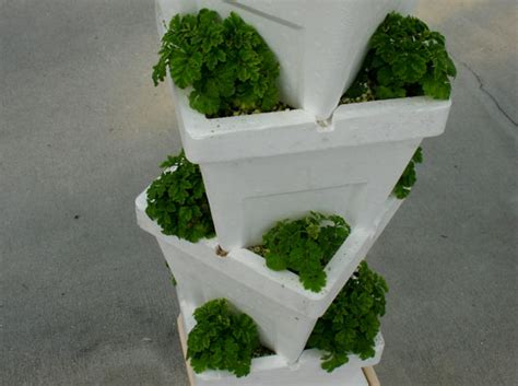 Can You Use Styrofoam In Planters mickey mouse sustainable farming at disney epcot