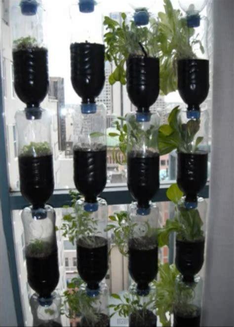 window garden bottle garden farm gardens water