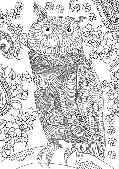 free printable coloring pages for adults advanced owl coloring pages for adults free detailed owl coloring