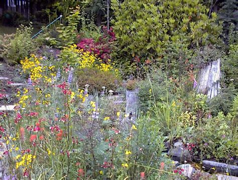 Butterfly Gardens by 1000 Images About Cottage Gardens On Gardens Perennials And Magnolias