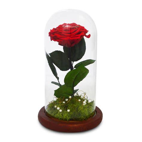 eternal roses eternal roses gifts dubai sharjah abu dhabi ajman umm
