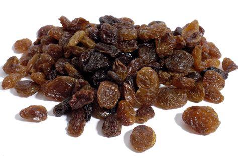 can dogs eat raisins can dogs eat raisins how many raisins will hurt a carion