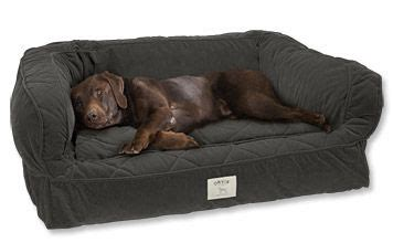 deep dish dog bed lounger deep dish dog bed around the house pinterest