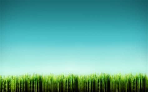wallpaper background grass cartoon grass wallpaper cartoon wallpaper