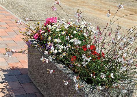 Fabriquer Ses Jardinières En Bois 3044 by Fleurs Jardiniere