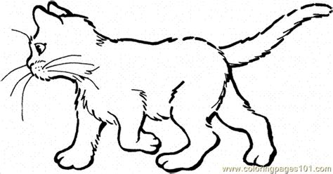 cat coloring pages online free 89 cat 20 coloring page coloring page free cat coloring