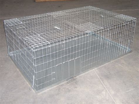 gabbia per piccioni gabbia per la cattura di colombi e piccioni