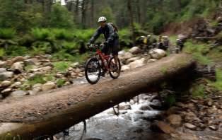 Bike Trails Mt Buller Mountain Bike Trails Mtb Dirt
