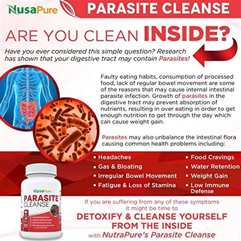 How To Purge Chronic Infections Detox by Nusapure Intestinal Parasite Cleanse For Humans