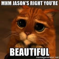 You Re Beautiful Meme - mhm jason s right you re beautiful shrek cat v1 meme
