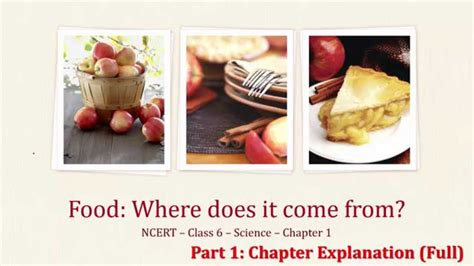 Do You About Black Foods 2 by Ncert Class 6 Science Ch 1 Food Where Does It Come From