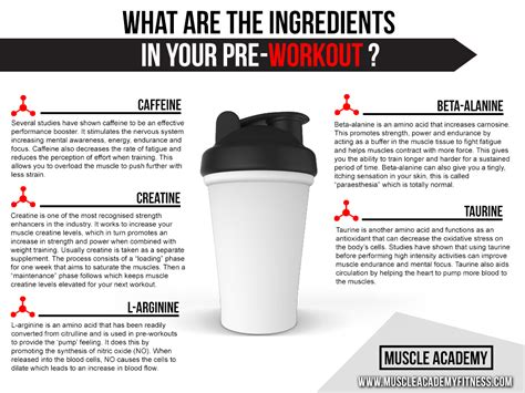 creatine on an empty stomach what is in your pre workout