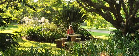 Botanical Gardens Summer C Summerfield Summerfield Luxury Resort Botanical Garden Summerfield