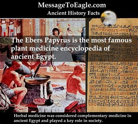 the features of the papyrus ebers books 83 best images about ancient history facts on