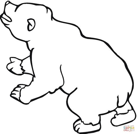 coloring page of a brown bear coloriage ours brun 10 coloriages 224 imprimer gratuits
