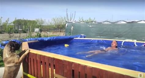 den pool mit den anweisungen um ein schwimmbad zu bauen mit