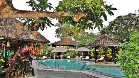 puri kelapa garden cottages pool area picture of puri kelapa garden cottages sanur