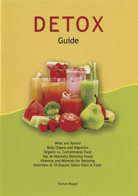 Detox Guide Book by Llewellyn Worldwide Detox Guide Product Summary