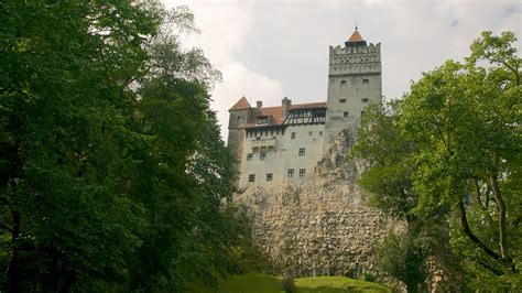 castle bran bran castle in bran expedia