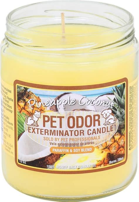 images  pet products candles  pinterest