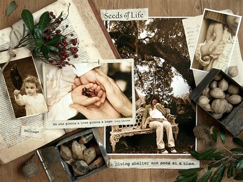 Magnolia Gift Card - seeds of life in memory southern magnolia tree large