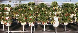 Vertical Hydro Garden - www powerhousehydroponics com wp content uploads 2014 05 tower garden hydroponic vertical