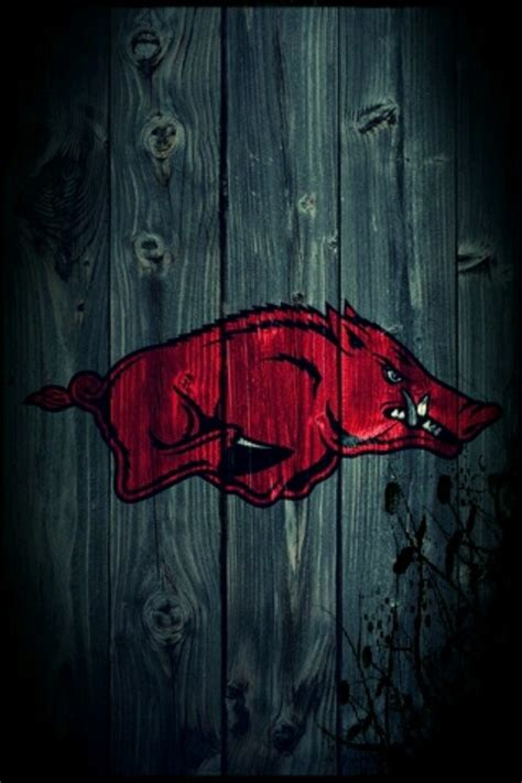 arkansas razorback wallpaper  screensavers wallpapersafari