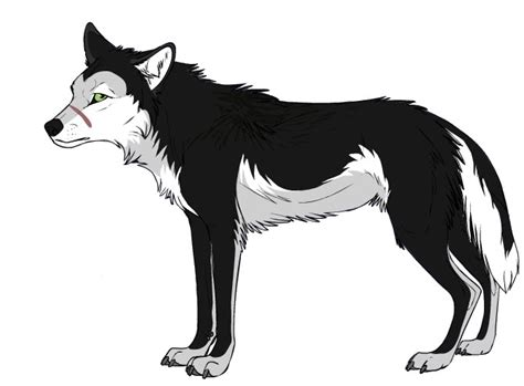 black and white anime wolves 3 background wallpaper black and white wolf anime wolf pictures to pin on