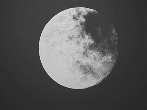 imagenes raras a blanco y negro imagenes blanco y negro tumblr imagenes gifs en blanco y