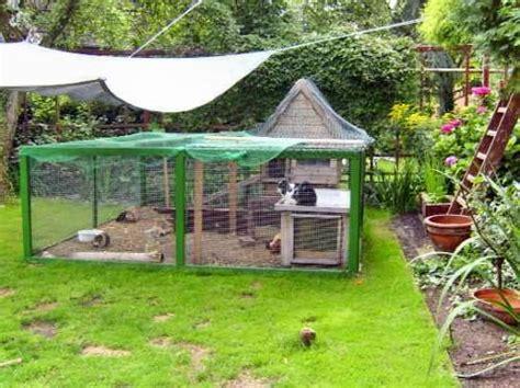 mein schöner garten forum kaninchen im garten kleiner dauergast im garten wildes