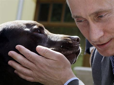 george s dogs george bush s story about vladimir putin s business insider