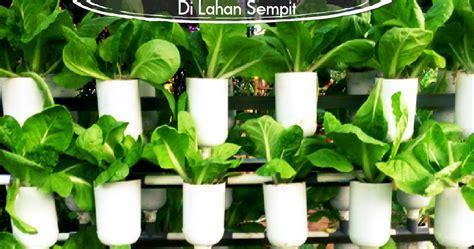 Jual Plastik Uv Hidroponik menanam hidroponik di lahan sempit dengan mudah jual