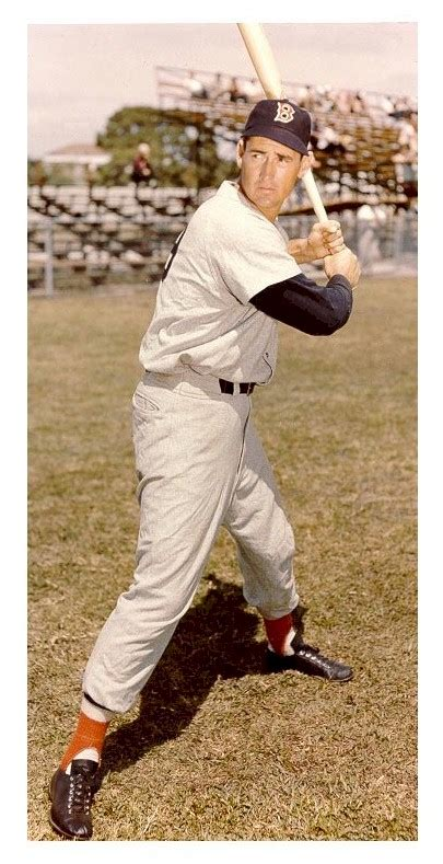 ted williams baseball swing baseball hall of fame deadwrite s dailies